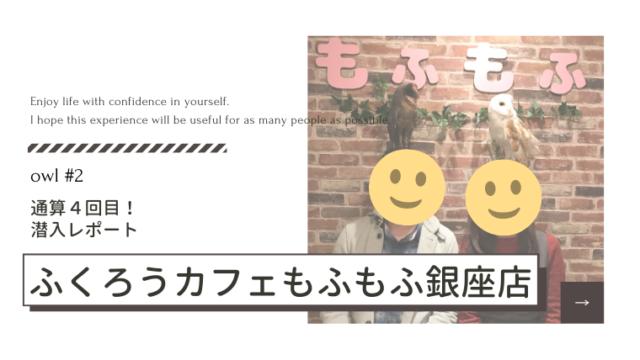 フクロウカフェもふもふ銀座店潜入レポート【通算4回目】