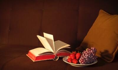 ソファの上の本